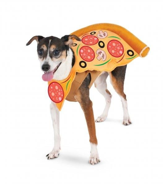 Rubies Pizza Slice L - Leaderpetsupply.com