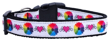 Technicolor Love Nylon Dog Collar Medium Narrow.