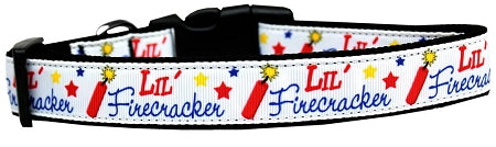 Little Firecracker Dog Collar.