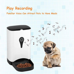 Automatic Pet Feeder for Dog Cats Food Dispenser Container Pet.