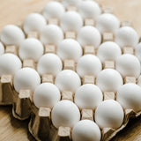 Eggs Large - 1 Tray