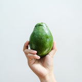 Avocado Lagkitan - 500 grams