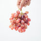 Grapes Seedless - 500 GRAMS