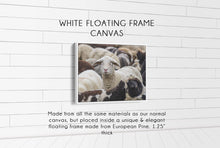 Load image into Gallery viewer, Flock of Sheep CUSTOM GIFT PRINTS DenverToDallas WHITE FRAMED CANVAS 12X16