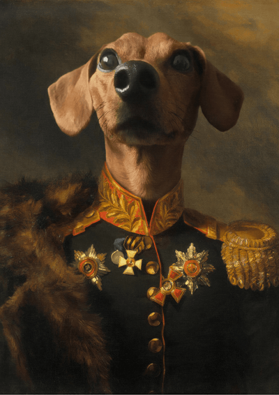 THE COMMANDER - CUSTOM PET PORTRAIT portrait-my-pet.com