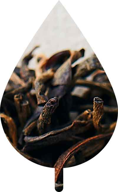Luxurious Black Tea