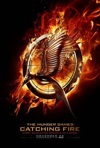 Poster Película The Hunger Games: Catching Fire