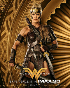 Poster Pelicula Wonder Woman 13