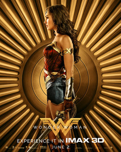 Poster Pelicula Wonder Woman 14