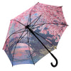 Cherry Blossoms Stick Umbrella