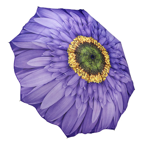 Picture of Wisteria Daisy Folding Umbrlla