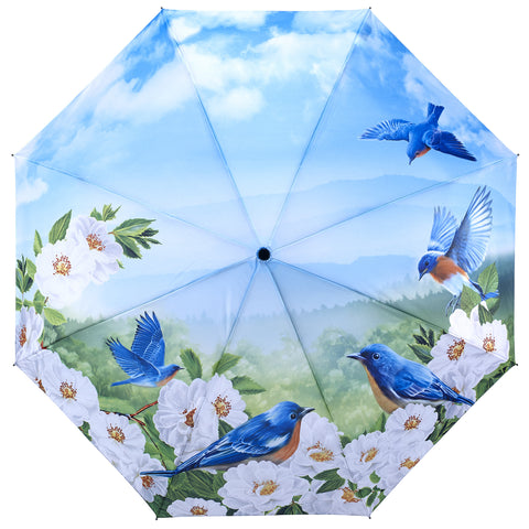 Picture of Blue Birds Folding Umbrella