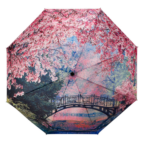 Picture of Cherry Blossoms Folding Umbrella