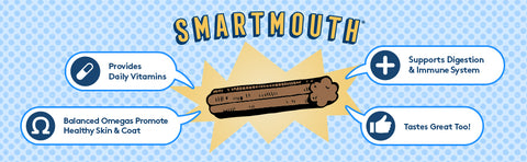 Image showing The Missing Link's Smartmouth Dental Chew with listed benefits.