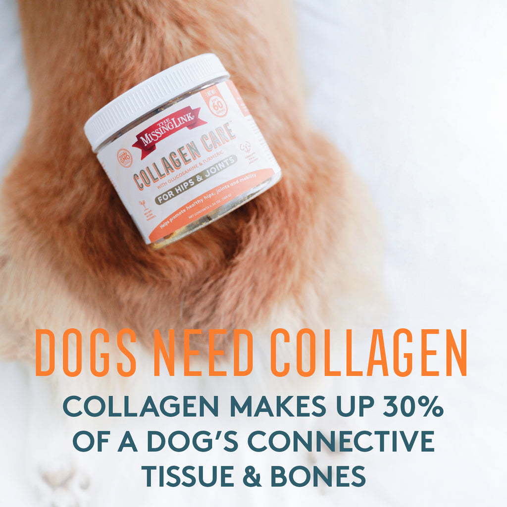 Collagen Care fur paw