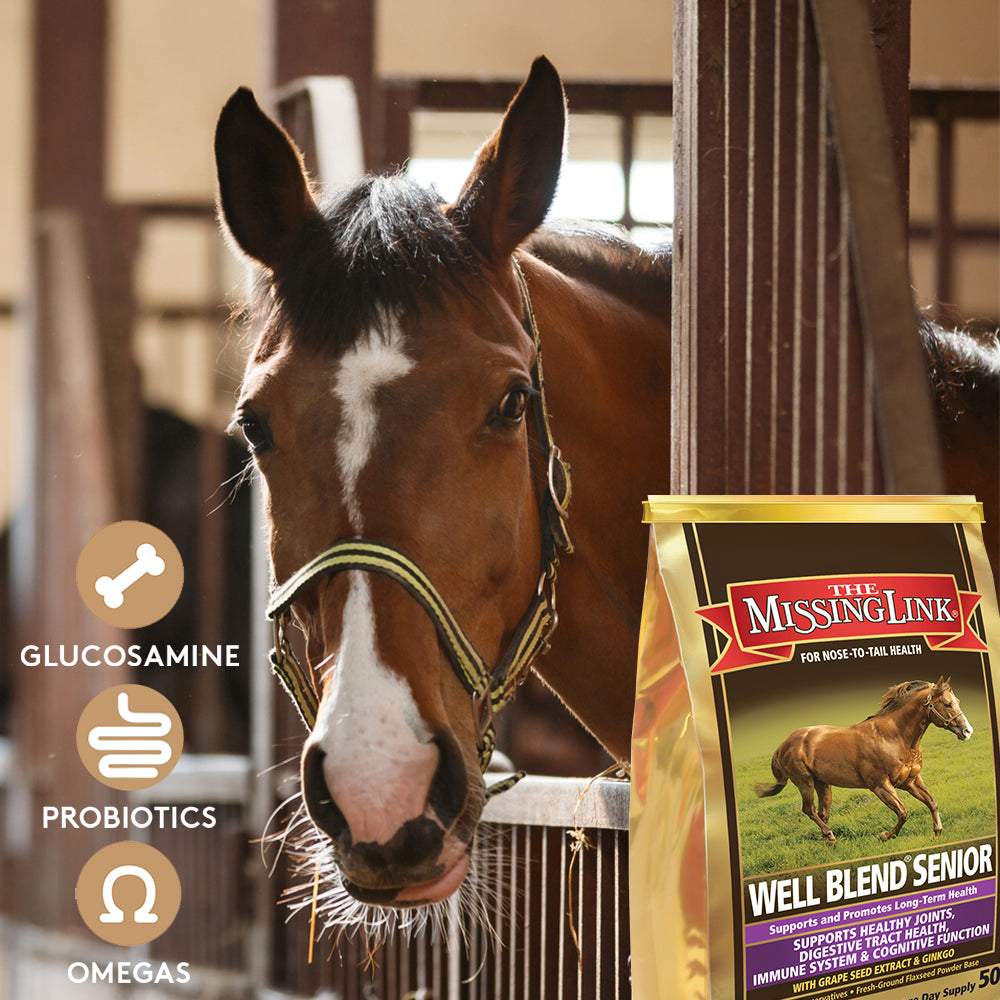 The Missing Link® Well Blend® Senior Equine Supplement 5 lb