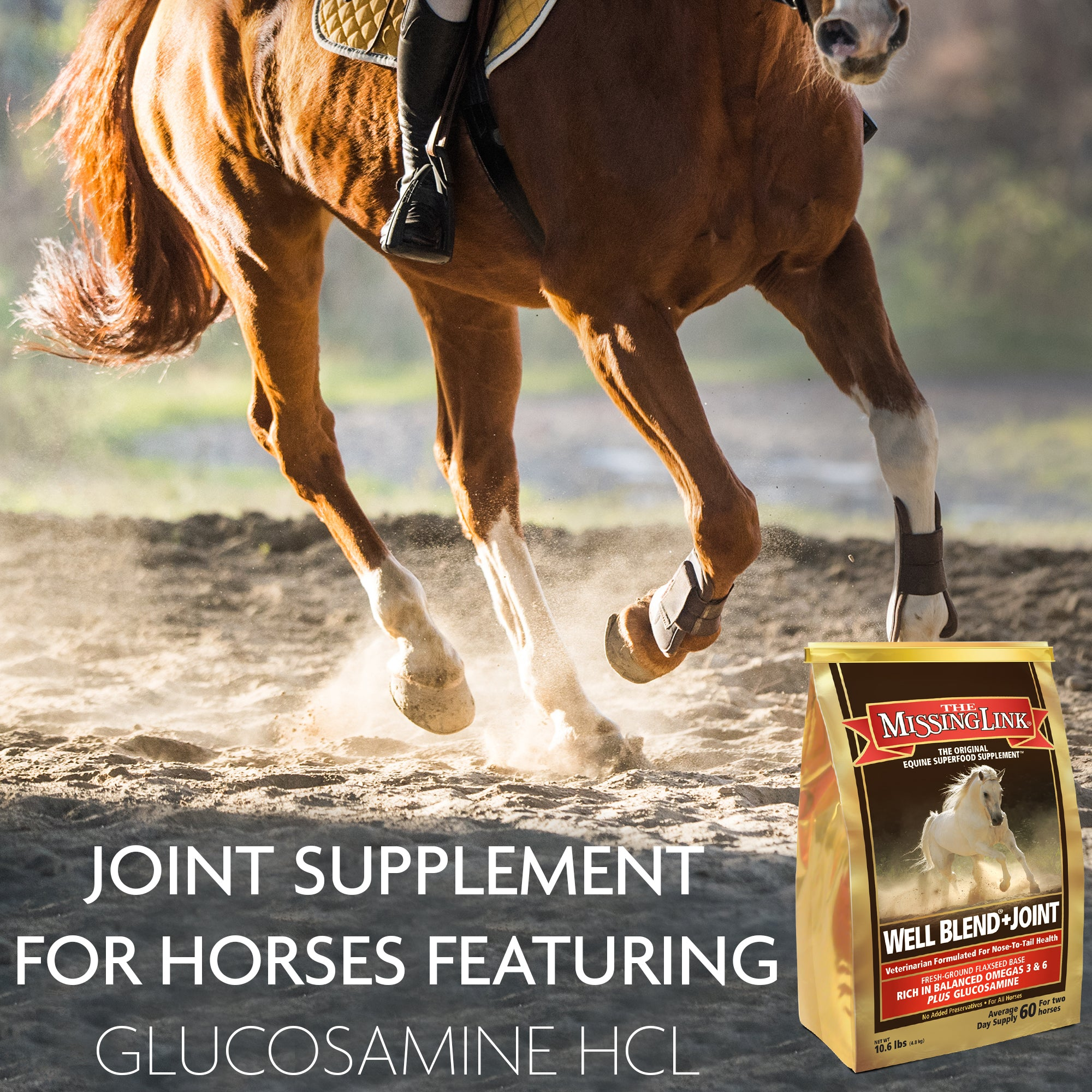 The Missing Link® Well Blend® + Joint Equine Supplement 10 lb