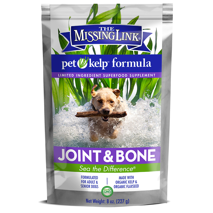 The Missing Link® Pet Kelp® Joint & Bone - Limited Ingredient Superfood Supplement  For Dogs 8 oz