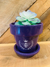 Load image into Gallery viewer, Flower Pot & Saucer
