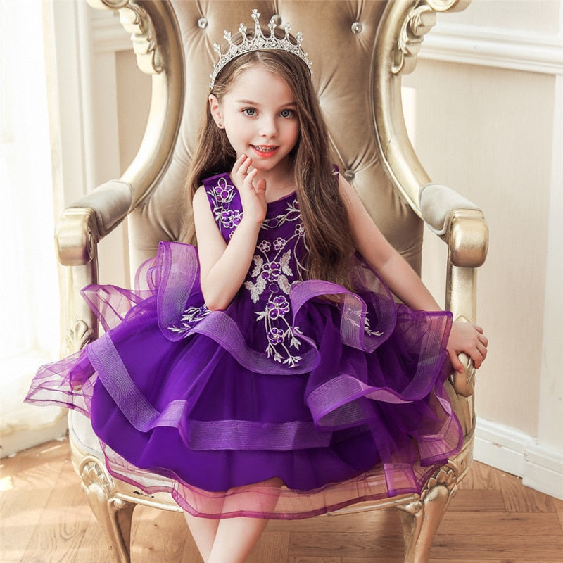 Girl Embroidery Flower Princess Dress Lace Tutu Kids Dresses - honeylives