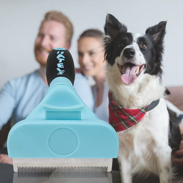 Pet Cat Dog Hair Remover Brush  Hair Shedding Grooming Tools Trimmer - honeylives