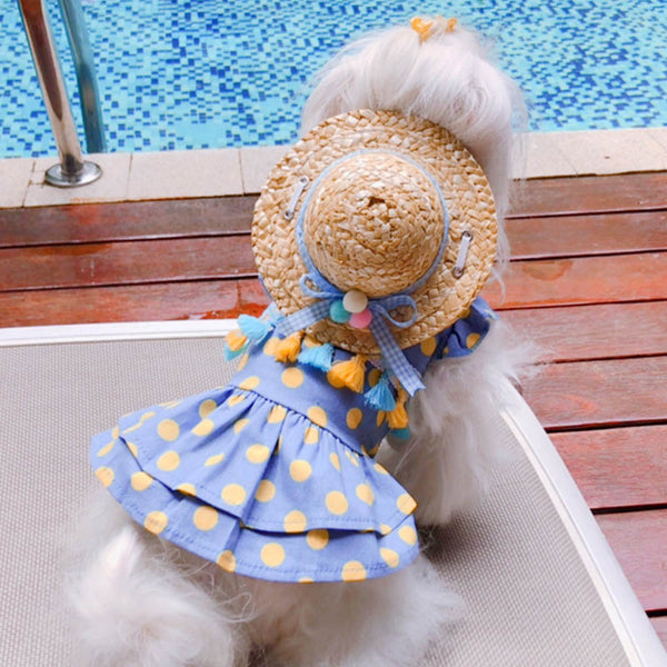 Dog Dress Clothing Costume Princess Cat Dresses - honeylives