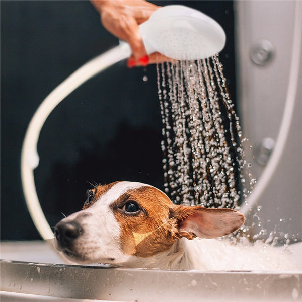 Pet Shower Head for Dog Cat Tap Faucet Spray Drains Washing Pets Bath  Lave Water - honeylives