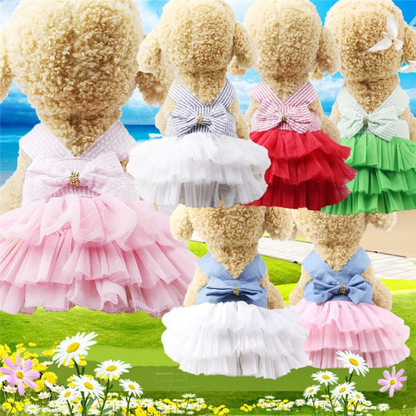 Summer Dog Dress Pet Dog Clothes for Small Dog Wedding Dress Skirt - honeylives