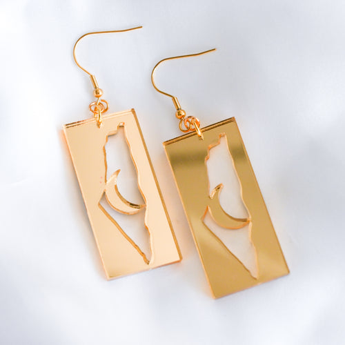 Palestine & Moon Earrings (Gold)