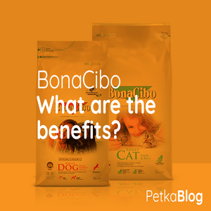 BonaCibo - The Benefits