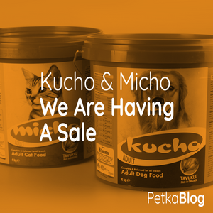 The Kucho And Micho Sale