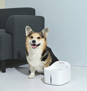 Dogness Smart Fountain