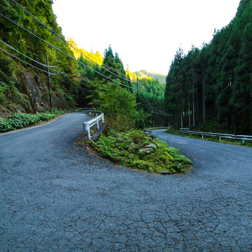 Perfect cycling roads winding deep into natural Kyoto.