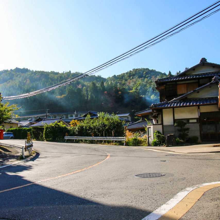 Beautiful Japanese towns on the climb into the mountain.