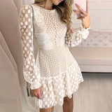 Sexy Mesh Lace Dresses Party Embroidery Female Vintage Polka Dot Short Dress