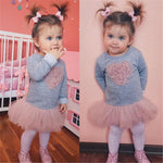 Baby Girl Long Sleeve Heart Lace Tutu Tulle Dress Clothes Cute