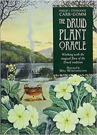 DRUID PLANT ORACLE: Working With The Magical Flora Of The Druid Tradition by  Carr-Gomm, Philip  Carr-Gomm, Stephanie  Worthington, Will
