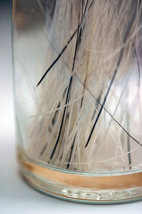 Cats Whiskers (real)