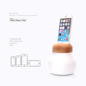IDMIX Nightstand Lamp with MFI Certified Charging Dock for iPhone, with Built-in 5000mAh Battery