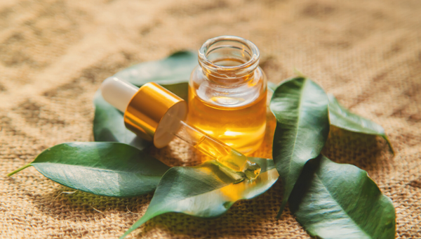 5 Everyday Remedies of Tea Tree oil