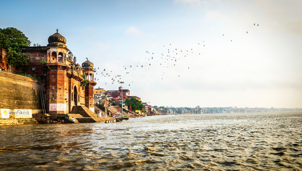 Do You Know of the Divine Ganga's Misery?