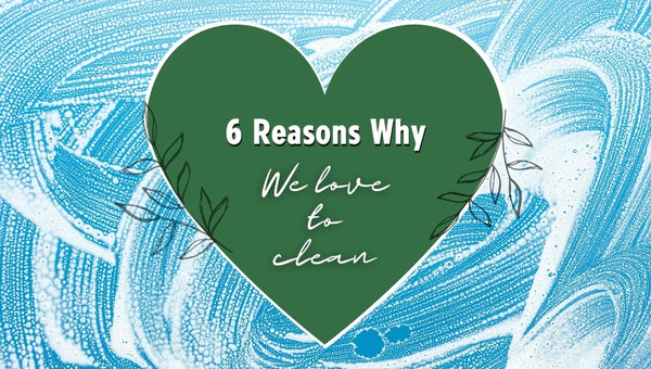 6 Reasons Why We Love to Clean