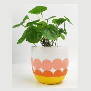 Ella Planter Peach, Yellow & Orange 11cm