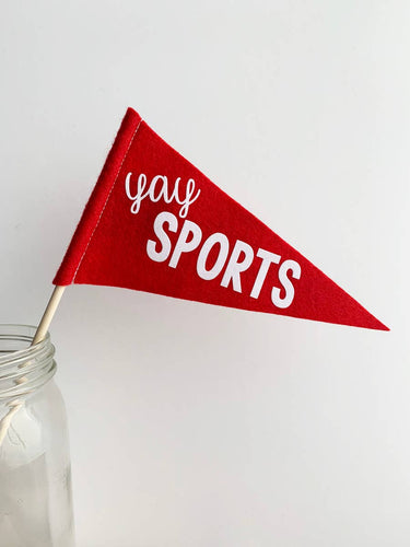 Yay Sports Mini Pennant - Common Dear