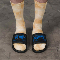 PARRY LOGO SLIDES