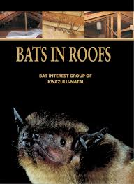 BATS IN ROOFS