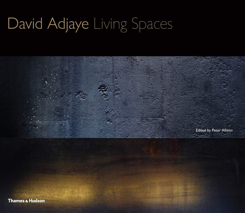 DAVID ADJAYE, living spaces