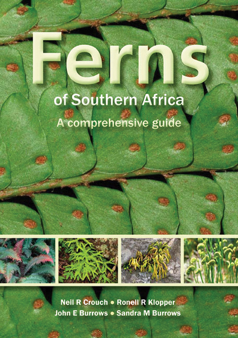 FERNS OF SOUTHERN AFRICA, a comprehensive guide