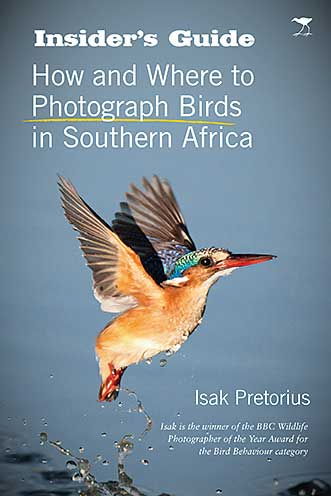 INSIDER'S GUIDE, HOW AND WHERE TO PHOTOGRAPH BIRDS IN SOUTHERN AFRICA