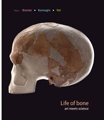 LIFE OF BONE, art meets science